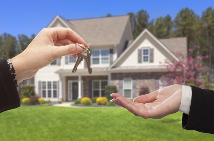 Foreclosures in Brandon